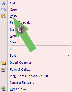 Picture-Showing-Paste-in-MS-Excel