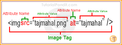 HTML Attribute Syntax in Hindi