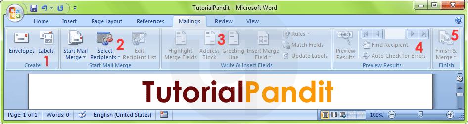 MS Word Mailings Tab in Hindi