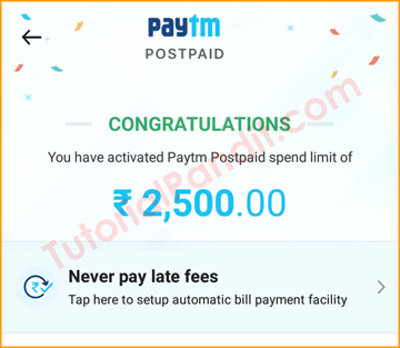 Paytm PostPaid Service Activated Successfully in Hindi