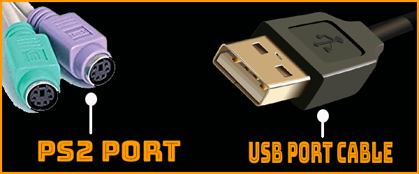USB Port and PS2 Port Cable in Computer Keyboard