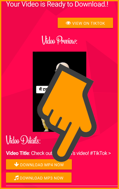 Select Your Video Format